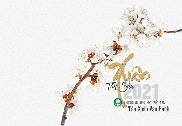 Thiệp chúc Xuân của BHD Trung ương GĐPT Việt Nam