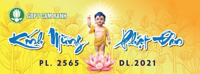 Phóng sự ảnh: các Đơn vị GĐPT tham gia Tuần lễ Huân tu kính mừng Phật đản PL.2565
